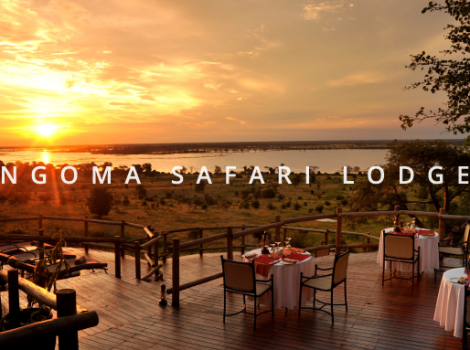 yb-ngoma-safari-lodge