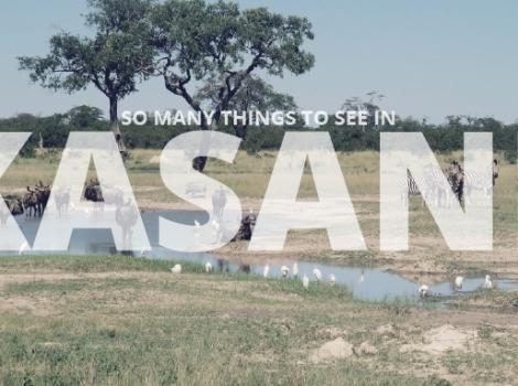 yb-kasane-things-to-see