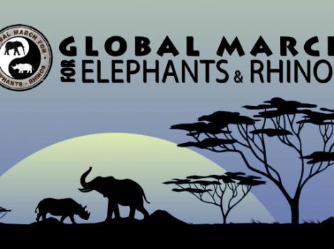 yb-global-march-er