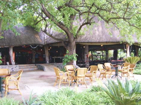 thamalakane-river-lodge1