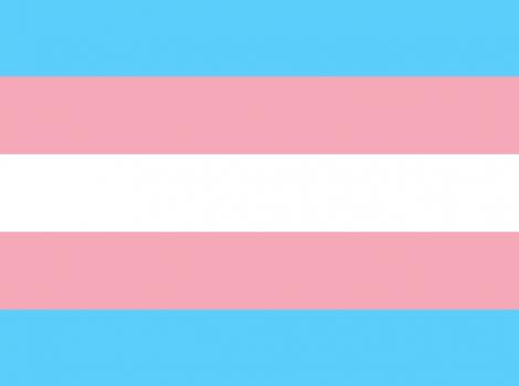 yb-transgender-flag