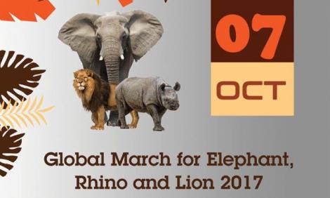 yb-global-march
