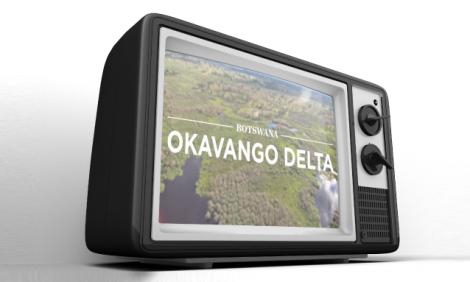 yb-okavango-movie