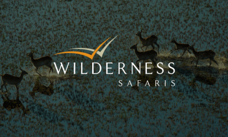 yb-wilderness-safaris1