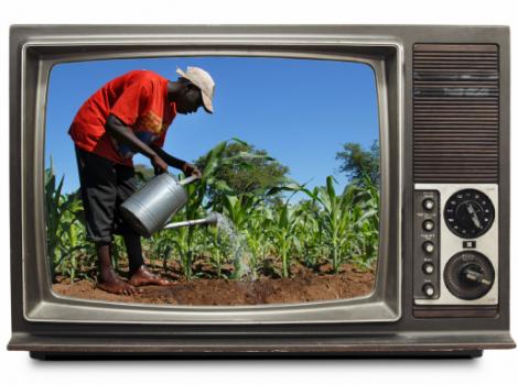 yb-china-bw-agri-tv