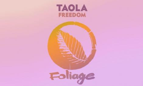 yb-taola-freedom