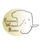 elephants-without-borders