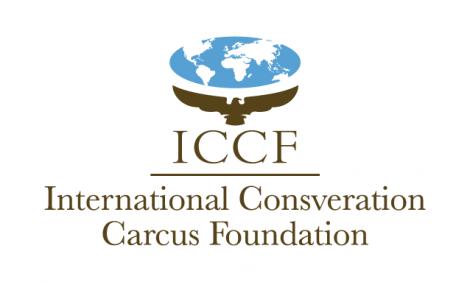 yb-international-conservation