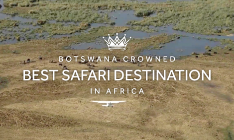 yb-bw-best-safari-destination