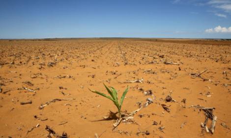 yb-el-nino-drought